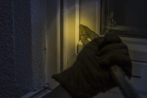 窓の鍵の閉め方が甘かったらしく、泥棒に入られたのだが・・・