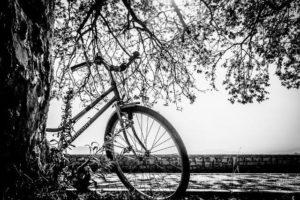 自転車ドロボーが車めがけて・・・