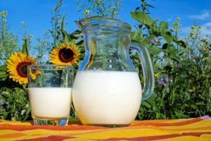 牛乳信者のウト。 上の子が小さい頃から「牛乳飲ませろ」「牛乳はいいんだ。水代わりに飲ませろ」とウザかった。